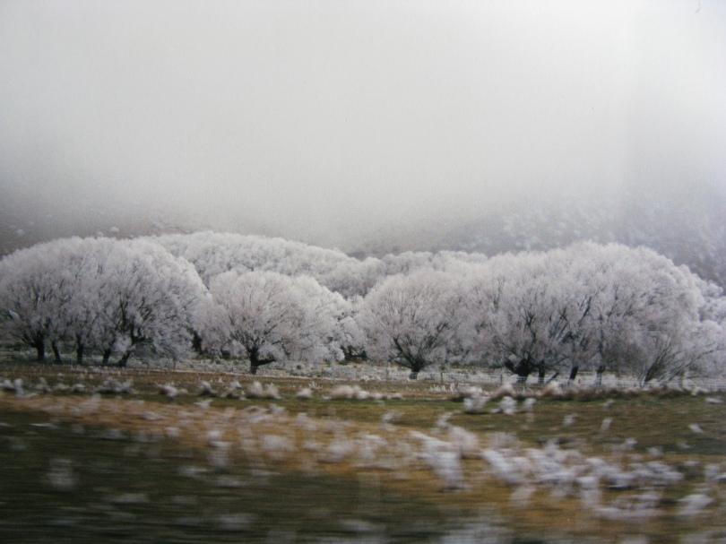 Winter in Aotearoa