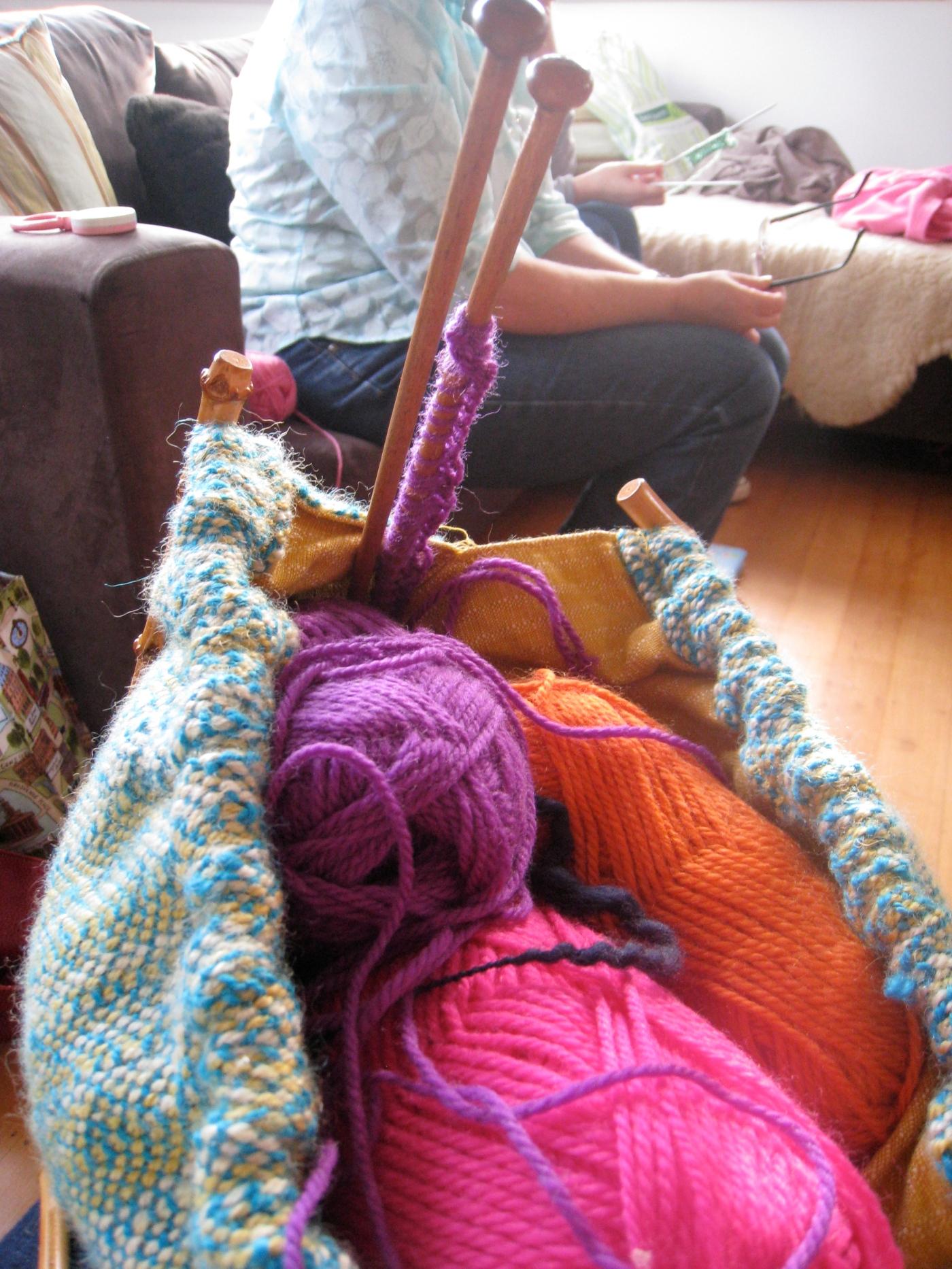 Sarah's knitting bag - wild & grace's knitting bee