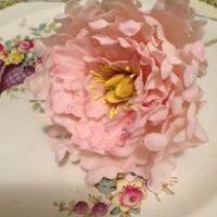 Florabunda & Cake do Sugar Flowers for Weddings