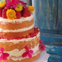 spongecake by florabunda & cake