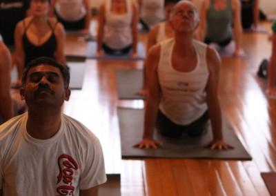 auckland yoga academy