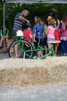 steiner-advent-fair-tga-2016-8
