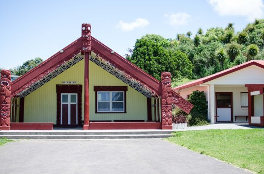 maungatapu-marae-2016-15