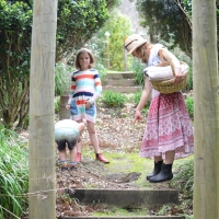 Through the Looking Glass Gardens: Te Puke: Tauranga