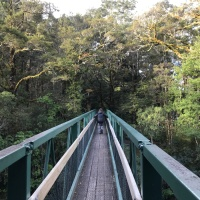 Overnight kid friendly hikes to huts in Canterbury
